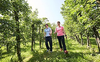 Medical-Park-Blumenhof-Bad-Feilnbach-Reha-nach-Brustkrebs-mit-Sporttherapie-Nordic-Walking